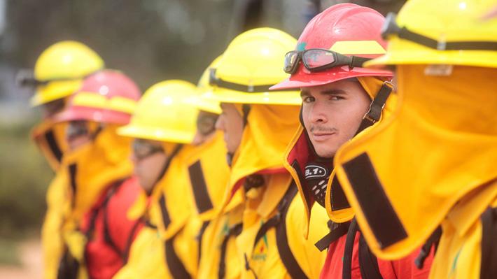Cara a cara contra el fuego: El perfil de los brigadistas de la Conaf que hacen frente a los incendios en Santiago