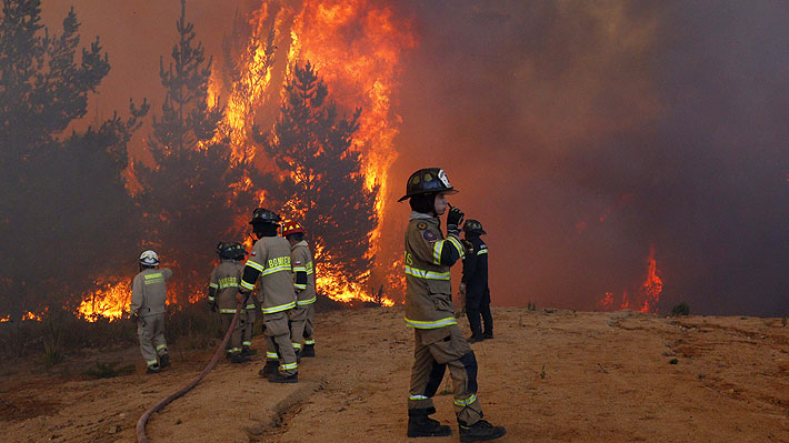 incendio-cauquenes