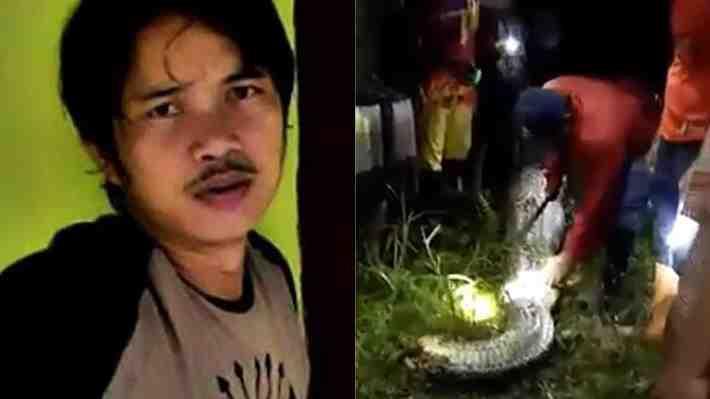 Impacto en Indonesia por serpiente pitón que devoró por completo a un hombre