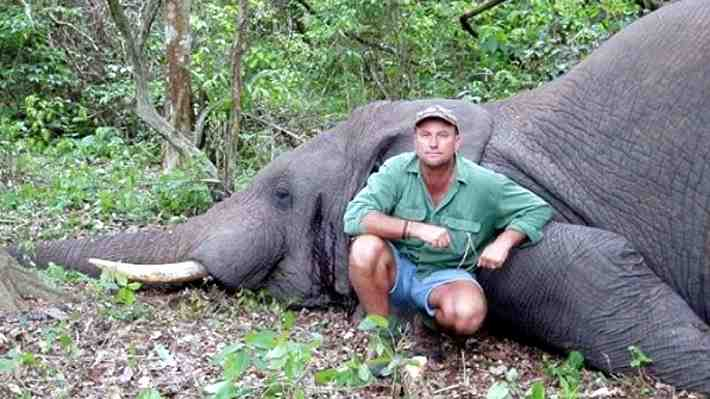Les había disparado a unas crías: Cazador profesional sudafricano muere aplastado por un elefante