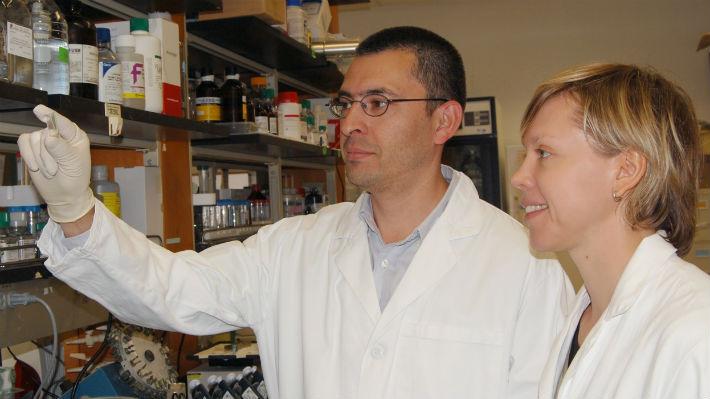 Científico chileno descubre un posible tratamiento para el Alzheimer