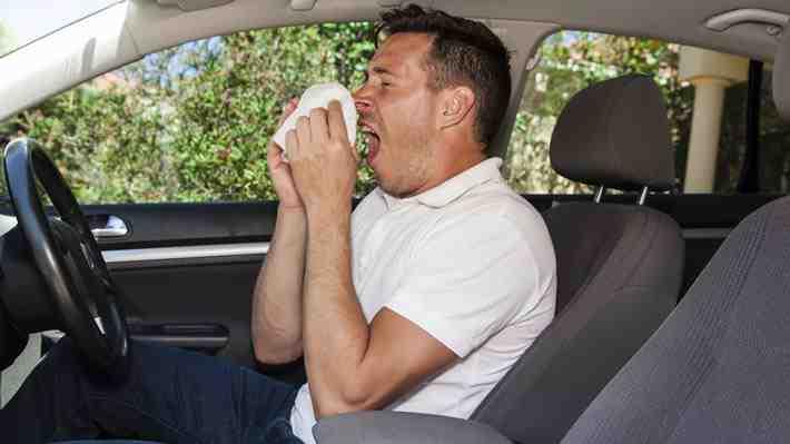 Estudio alerta presencia de bacterias en automóviles: ¿Debemos preocuparnos?