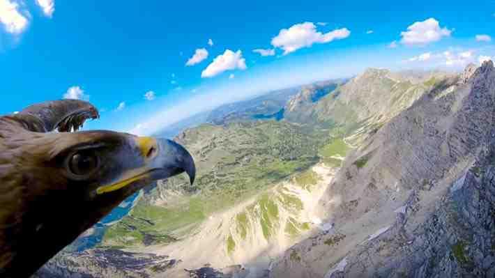 [VIDEO 360°] Sobrevuela los Alpes italianos junto a un águila