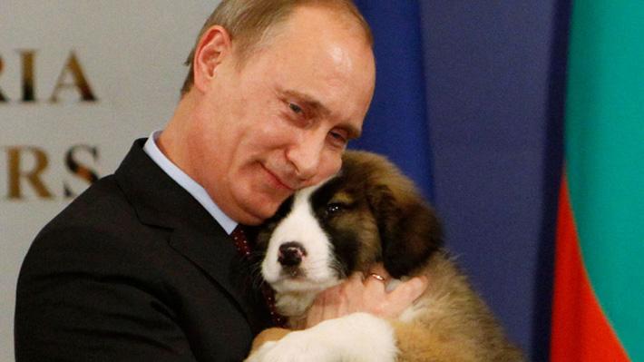 Del gato Larry a los tres perros de Putin: Conoce las mascotas de los líderes