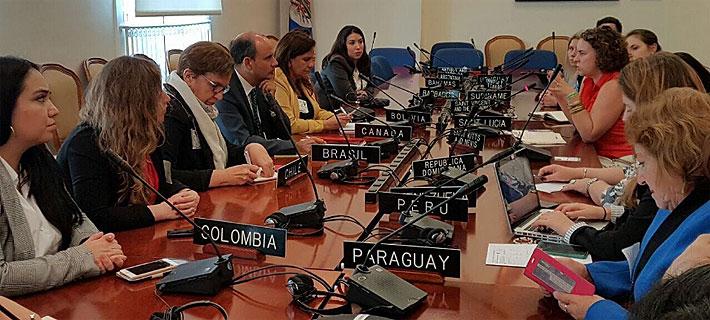 """Comisión Interamericana de Mujeres y equidad de género en Chile: """"A nivel regional está en una situación muy precaria"""""""