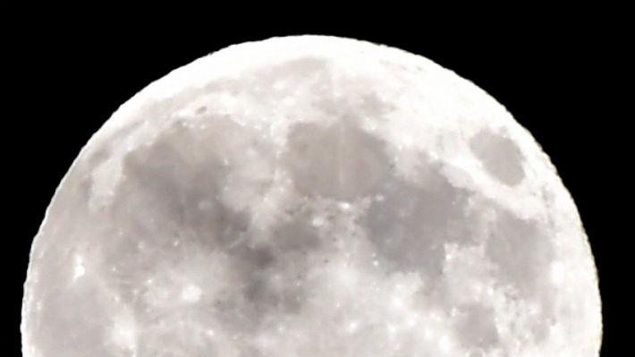 Comenzar el año con una Súper Luna: Los detalles para no perderse este fenómeno astronómico