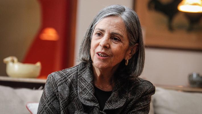 "Pilar Armanet, la ex vocera de Bachelet señalada como ""defensora"" del lucro en el TC"