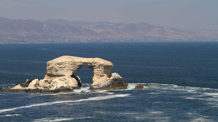 Problemas con el curriculum marcan salida de seremis: Antofagasta es la región con más bajas