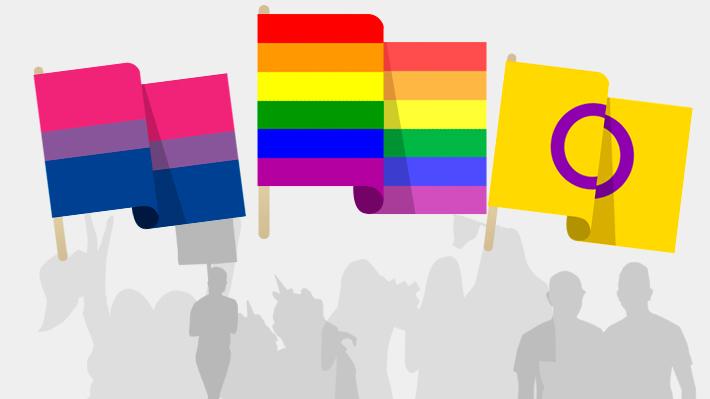 Más allá del arcoíris: Las banderas que puedes ver flamear durante la Marcha por el Orgullo