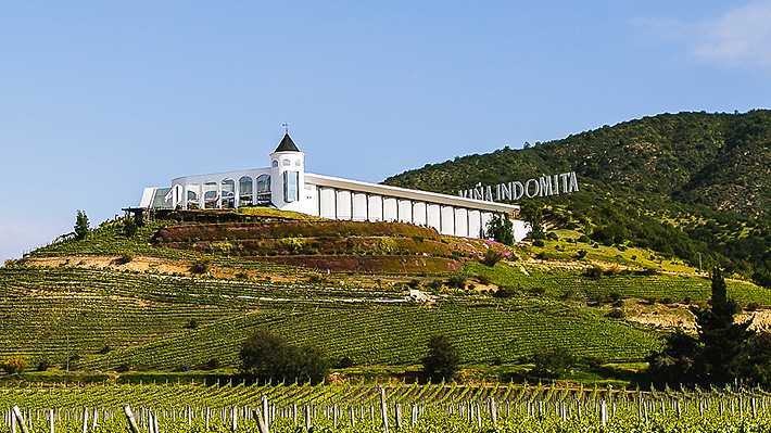 Grupo vitivinícola más grande de China firma acuerdo para adquirir tres viñas en Chile