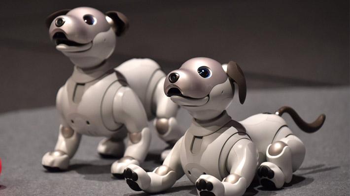 Sony presenta al nuevo Aibo, el perro con inteligencia artificial