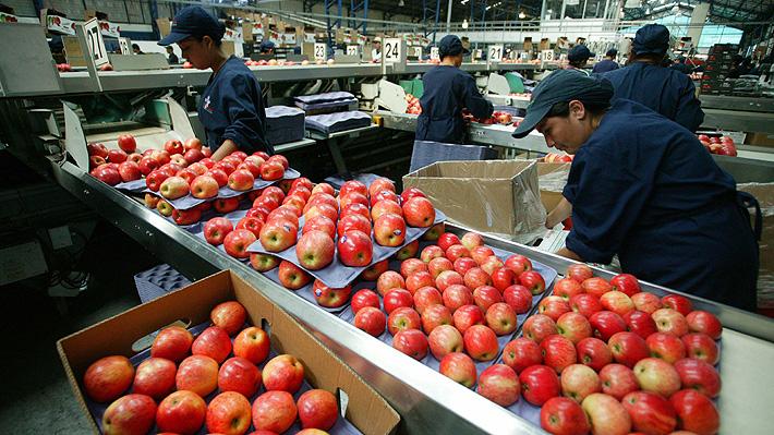 Las propuestas para que las exportaciones de alimentos lleguen a US$32 mil millones en ocho años