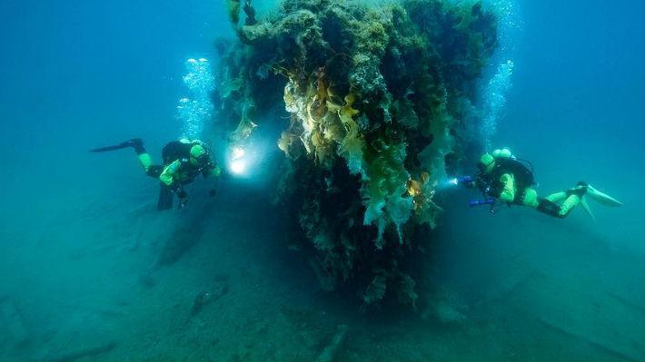 Conoce el proyecto de exploración de océanos que llegará a Chile en 2019 para identificar problemas medioambientales