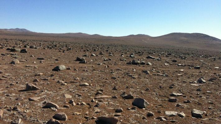Microbios encontrados en el desierto de Atacama son una ventana para descubrir vida en Marte