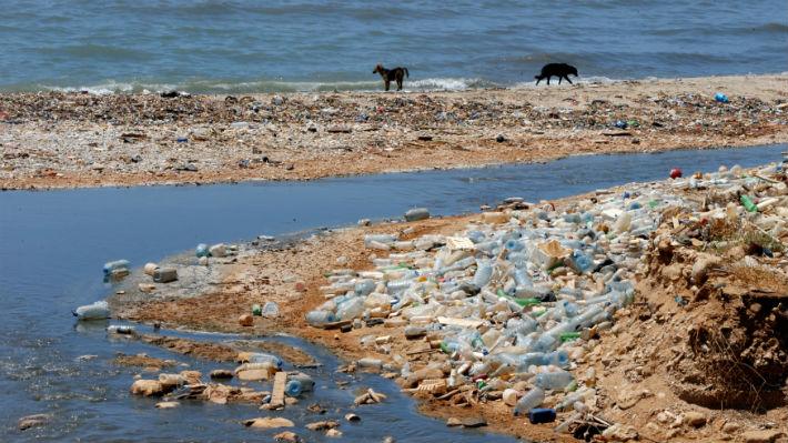Las bacterias marinas crecen más de lo que se creía con el plástico vertido en el mar