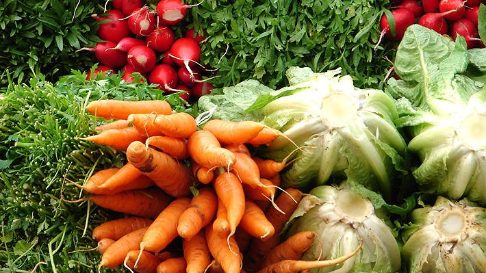 Dieta nórdica: Conoce en qué consiste el régimen alimenticio que según la OMS es uno de los más saludables