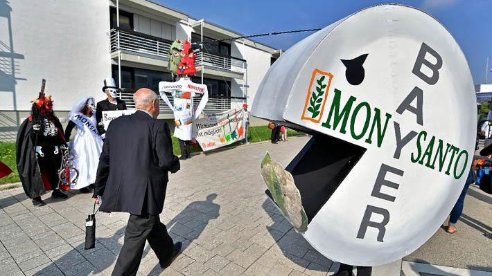 FNE aprueba con medidas de mitigación fusión entre Bayer y Monsanto