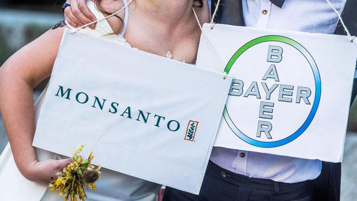 Bayer defiende compra de Monsanto y ecologistas temen que fusión impacte en precios de los alimentos