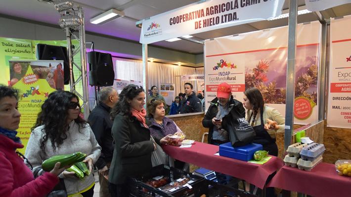 """Se constituye la Asociación Nacional de Cooperativas de Chile para darle mayor """"visibilidad"""" al sector"""