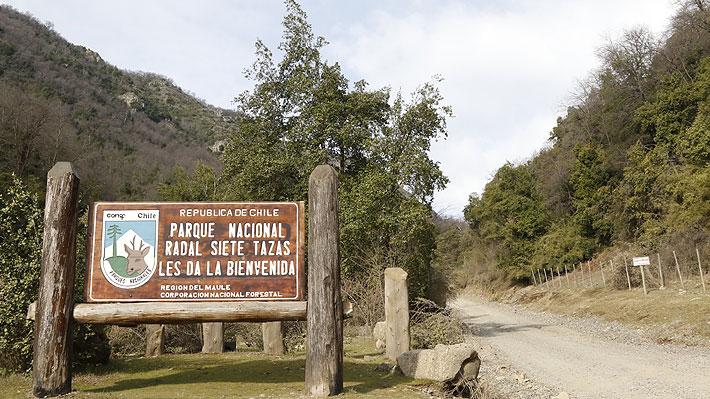 Gobierno concesiona dos áreas de servicios al interior del Parque Radal Siete Tazas