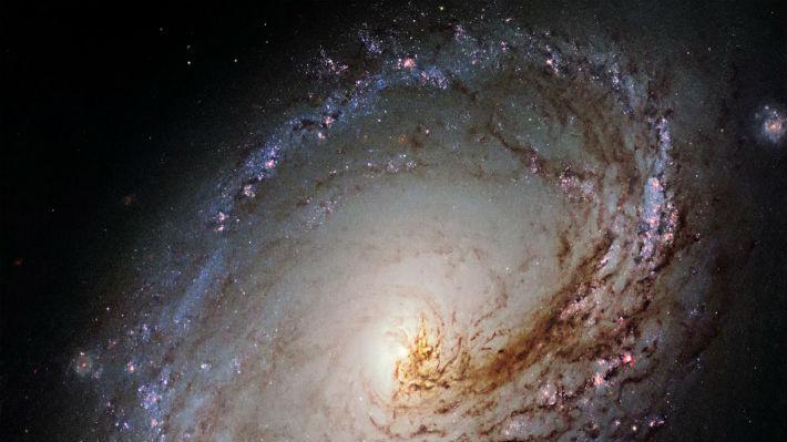 La Vía Láctea tuvo una galaxia hermana que fue devorada por Andrómeda hace miles de millones de años