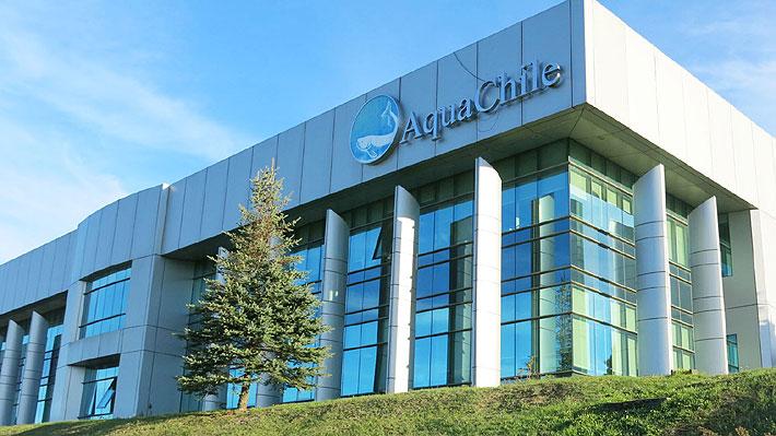 Agrosuper acuerda la compra de la salmonera AquaChile: Operación podría alcanzar los US$850 millones
