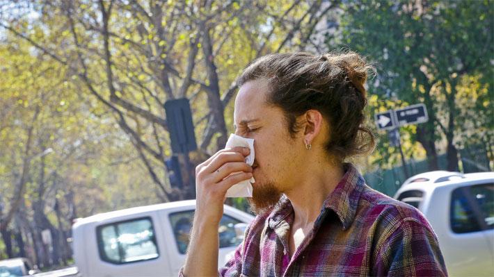 Se acerca la primavera y demanda por antialérgicos se dispara 40%: ¿Cuáles son los más y menos caros?