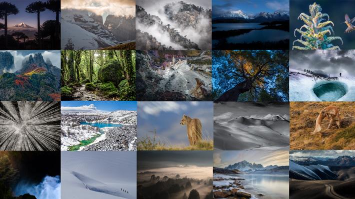 Fotos: Conoce las 20 imágenes finalistas del concurso sobre la naturaleza chilena