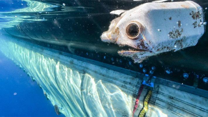"""Fundador de The Ocean Cleanup y los problemas en la recolección de plástico: """"Lo hemos superado todo y superaremos esto"""""""