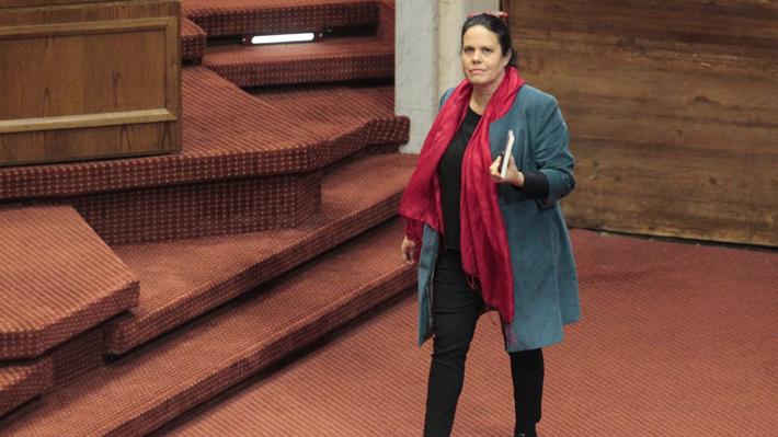 """Presidenta de la Cámara anuncia """"consulta"""" al Consejo de Asignaciones Parlamentarias por viáticos de diputados"""
