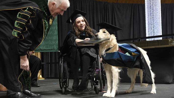 Griffin, el perro que recibirá un diploma universitario en Nueva York