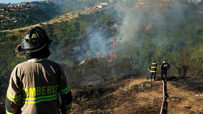 Intendencia declara Alerta Roja por incendio forestal que amenaza con llegar a viviendas en Viña del Mar