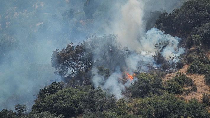 Se reactiva incendio forestal en cerro Manquehue: Personal de la Conaf y Bomberos combate las llamas