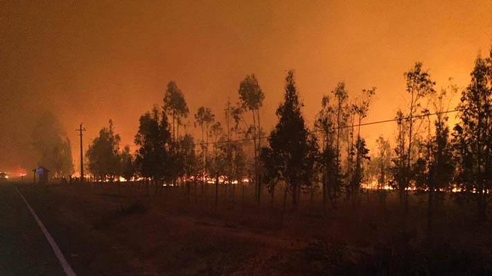 Incendio Forestal en Santo Domingo obliga a evacuar 35 viviendas de forma preventiva