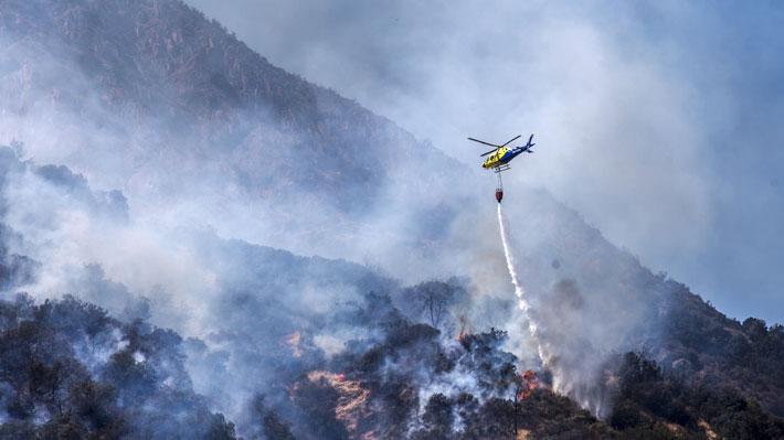 Balance Onemi: Incendios forestales han consumido más de 2.200 hectáreas a lo largo de Chile