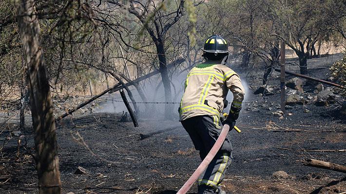 Aún hay 8 incendios forestales activos a lo largo del país y la región de Valparaíso es la más complicada