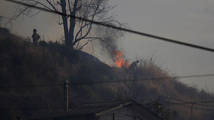 Nuevo balance de Onemi: Siete incendios forestales activos y sigue alerta roja en tres comunas de la región de Valparaíso