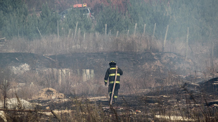 Bomberos publica video donde se ve a jóvenes provocando incendio forestal en Valparaíso