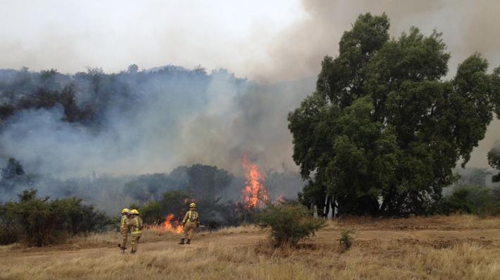 Onemi declara Alerta Roja en Melipilla por incendio forestal aledaño a un sector de viviendas