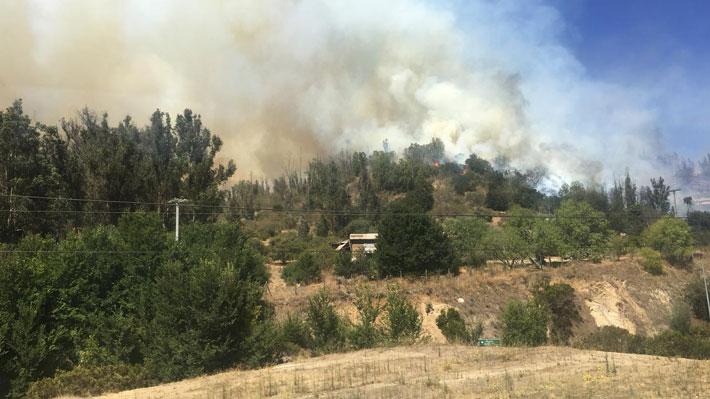 Onemi declara alerta roja en Casablanca por incendio forestal cercano al Santuario de Lo Vásquez