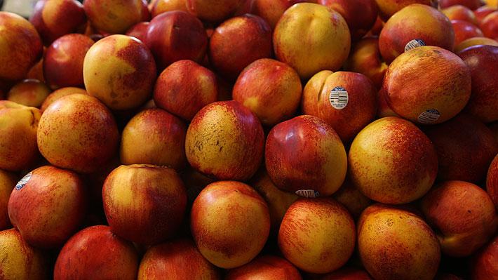 EE.UU. ordena retiro de fruta chilena en 20 estados ante posible contaminación con listeria