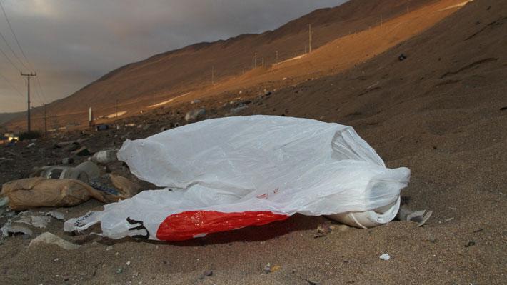 A días de prohibición total en retail: En seis meses se ha evitado el consumo de 1.000 millones de bolsas plásticas en el país