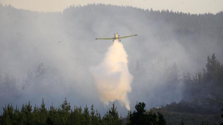 Conaf y Onemi decretan Alerta Roja en La Araucanía y Los Ríos por incendios forestales