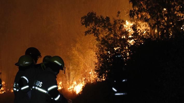 Onemi entrega reporte de incendios forestales en el país y declara Alerta Roja en Futaleufú