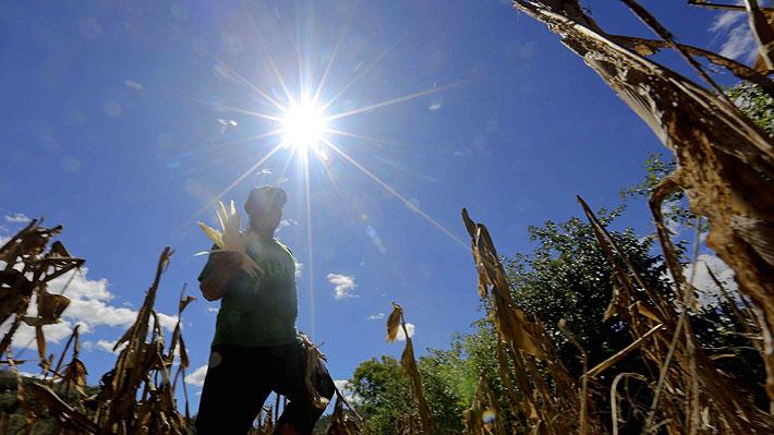 Prolongada sequía acentúa la disputa por el agua en la zona interior de la Región de Valparaíso