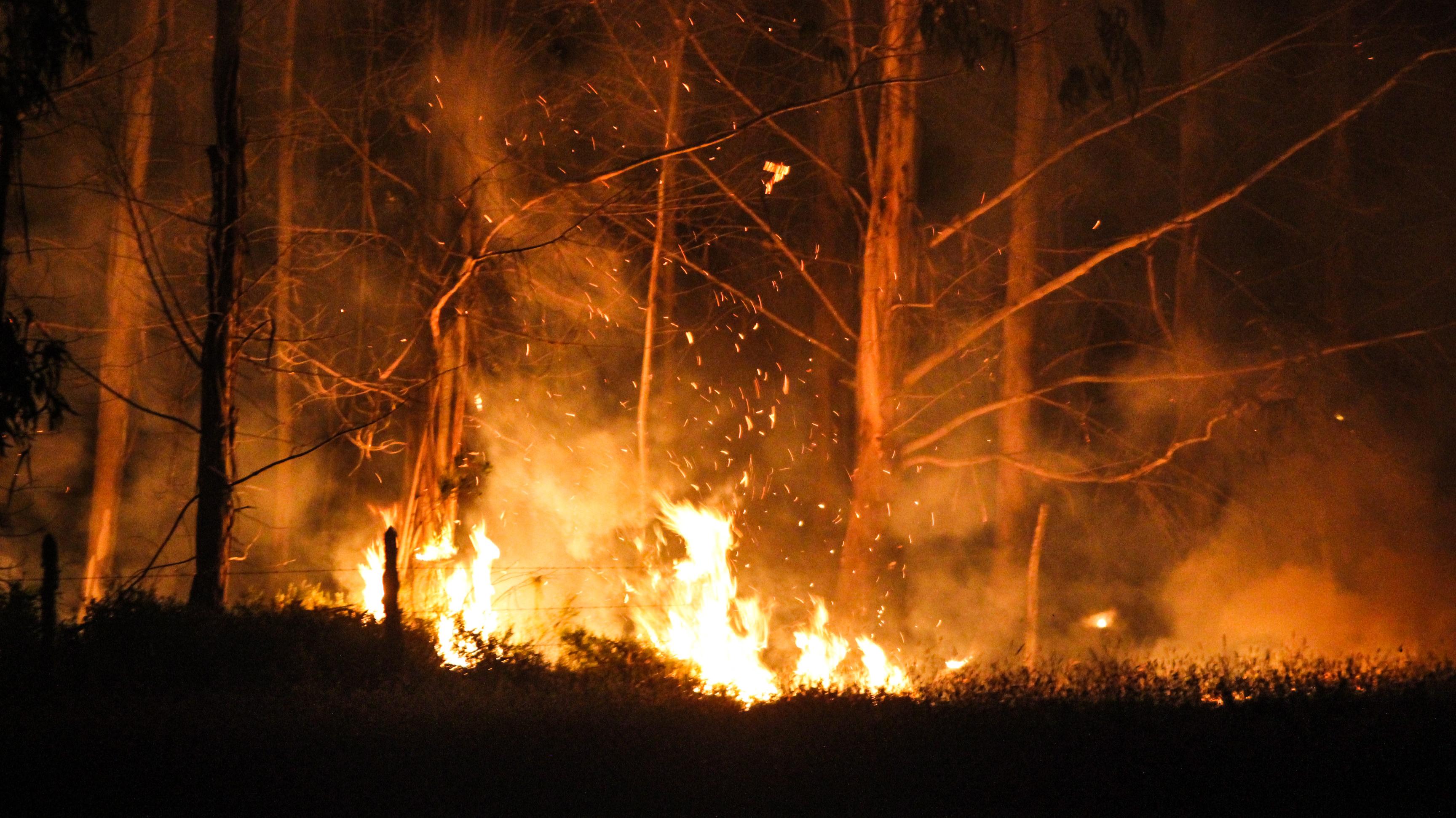 """Alcalde de Cochrane: """"Si el incendio de la Patagonia fuera en la zona central estaría apagado"""""""