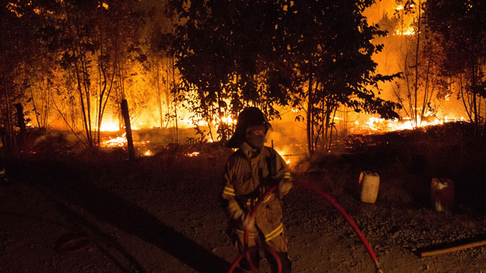 Incendios forestales han dañado un 45% más de superficie en comparación a la misma fecha de la temporada pasada