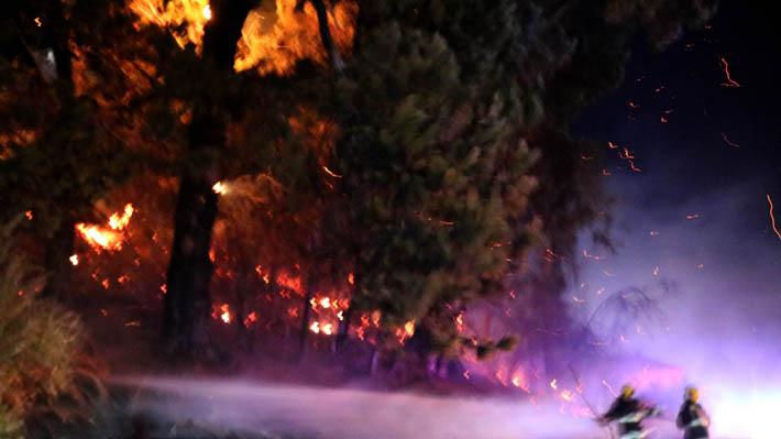 """Declaran Alerta Amarilla para la provincia de Concepción por """"simultaneidad"""" de incendios forestales"""