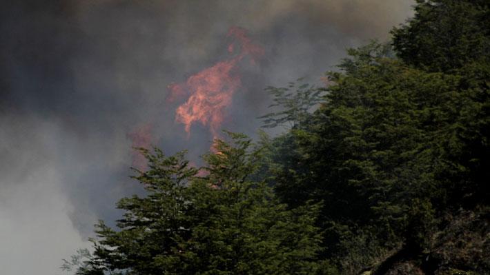 """Ministro (s) de Medio Ambiente critica a alcalde de Cochrane: Mayor apoyo para contener incendios """"no es gestión suya"""""""