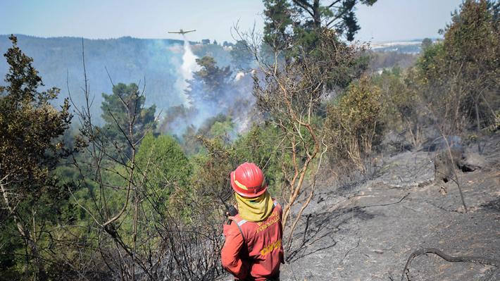 Chadwick visitará Región del Biobío para abordar incendios en medio de polémica por toque de queda